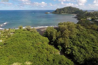 Hana HI Residential Lots & Land For Sale: $299,000