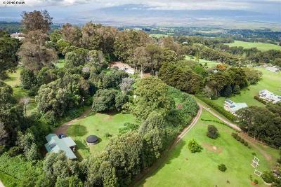 Makawao Single Family Home For Sale: 1601 Olinda Rd