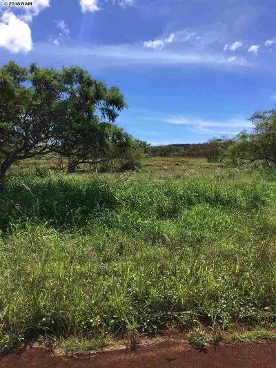 Maui County Residential Lots & Land For Sale: Ahiu Rd