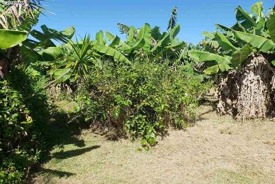 Maui County Residential Lots & Land For Sale: 845 Puapana Pl