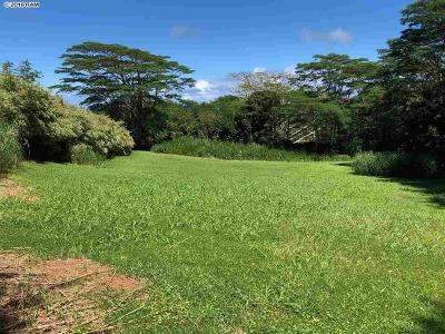 Residential Lots & Land For Sale: 20 Waipuhia Pl