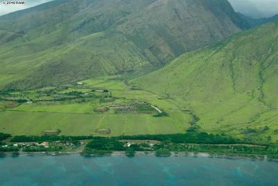 Maui County Residential Lots & Land For Sale: 295 Luawai St #Lot #12