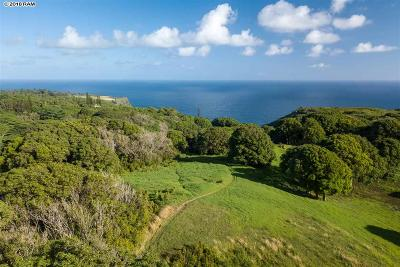 Residential Lots & Land For Sale: 327 Hanauana Rd
