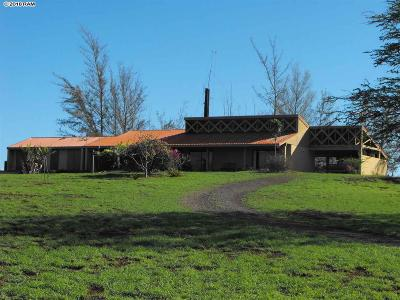 Maui County Single Family Home For Sale: 1560 Kalua Koi Rd
