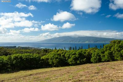 Lahaina Residential Lots & Land For Sale: 138 Keoawa St