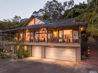 Single Family Home For Sale: 365 Waiama Way