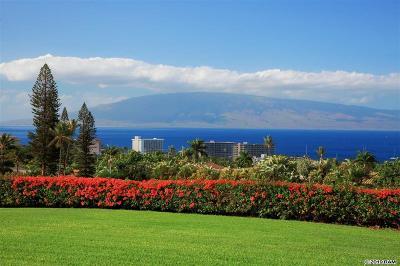 Maui County Condo/Townhouse For Sale: 50 Puu Anoano St #2901