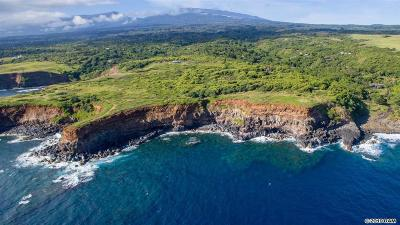 Maui County Residential Lots & Land For Sale: Honopou Rd
