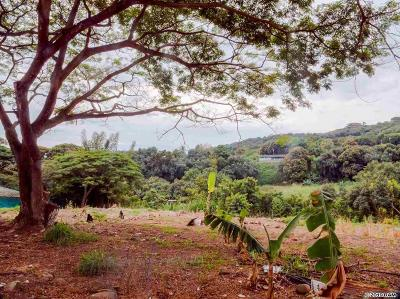 Wailuku Residential Lots & Land For Sale: 178 River Rd