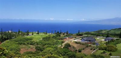 Wailuku Residential Lots & Land For Sale: 275 Kaukini Loop #48