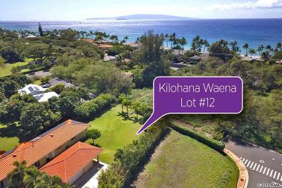 Kihei Residential Lots & Land For Sale: 159 Hoolapa St #12