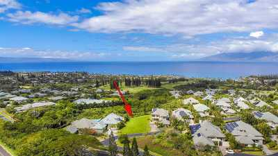 Residential Lots & Land For Sale: 624 Silversword Dr #Lot 28