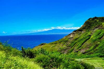 Wailuku Residential Lots & Land For Sale: 4970 Kahekili Hwy