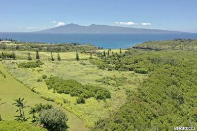 Residential Lots & Land For Sale: 98 Keoawa Pl