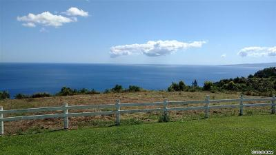 Wailuku Residential Lots & Land For Sale: 3650 Kahekili Hwy #Lot 1-A-