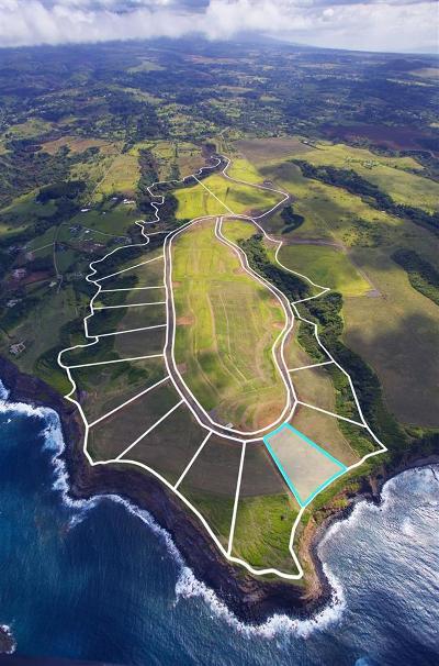 Residential Lots & Land For Sale: 850 Kai Huki Cir #4