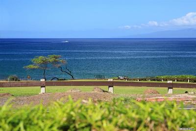 Maui County Condo/Townhouse For Sale: 2737 S Kihei Rd #102