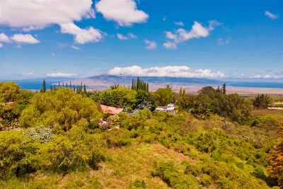 Maui County Residential Lots & Land For Sale: 45 Ahinahina Pl