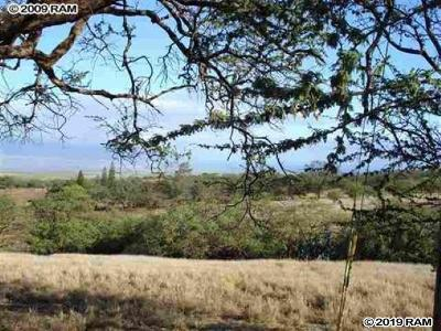 Residential Lots & Land For Sale: Lot 4-C Omaopio Rd #Lot 4-C