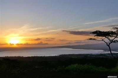 Wailuku Residential Lots & Land For Sale: 1800 Malaihi Rd