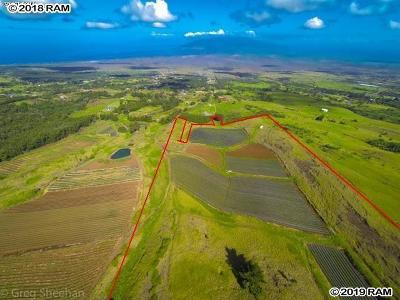 Residential Lots & Land For Sale: 490 Koheo Rd #A