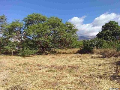 Maui County Residential Lots & Land For Sale: 89 Mohala Pl