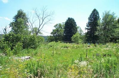 Boone Residential Lots & Land For Sale: Lot 6 156th