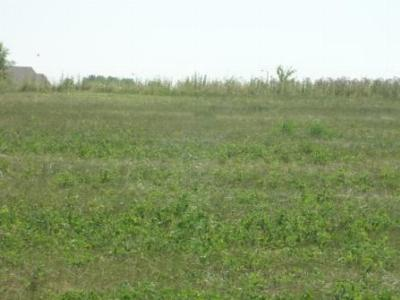 Boone IA Residential Lots & Land For Sale: $39,900