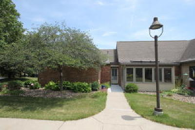 Ames Condo/Townhouse For Sale: 2434 Hamilton Dr.