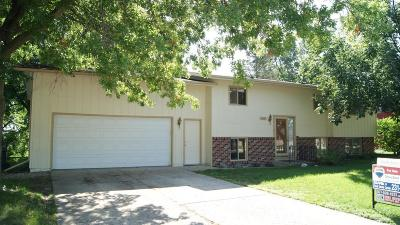 Ames Single Family Home For Sale: 3516 Jewel Drive