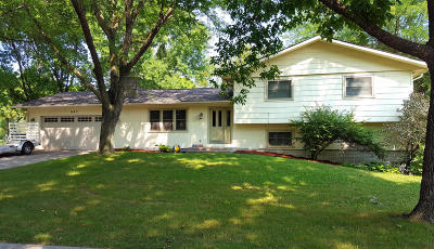 Ames Single Family Home For Sale: 603 Garnet Drive