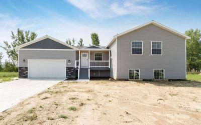 Ames Single Family Home For Sale: 2212 228th Place