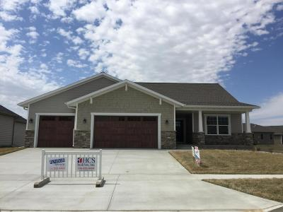 Ames Single Family Home For Sale: 4205 Ballentine Drive