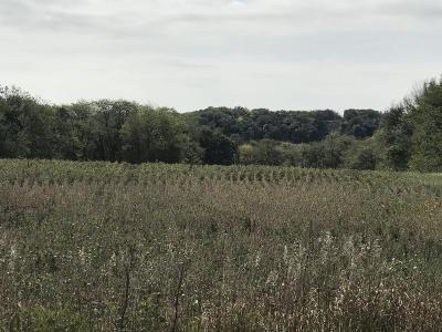 Boone Residential Lots & Land For Sale: 1054 L Avenue