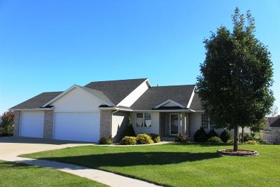 Ames Single Family Home For Sale: 508 Brown Court