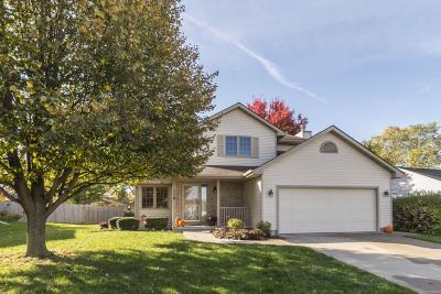 Gilbert Single Family Home For Sale: 110 Christian Petersen Avenue