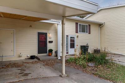 Ames Single Family Home For Sale: 713 Garnet Drive