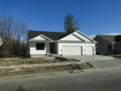 Ames Single Family Home For Sale: 420 Sunflower Drive