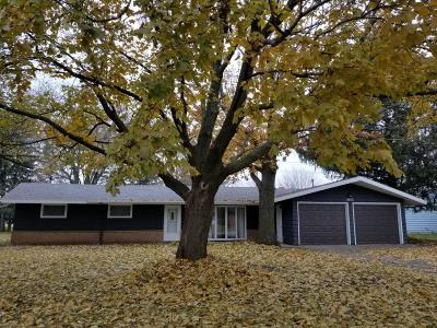 Ames Single Family Home For Sale: 3013 Grove Avenue