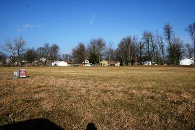 Boone County Residential Lots & Land For Sale: 113 Commerce Drive