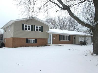 Boone Single Family Home For Sale: 1604 Prairie Avenue