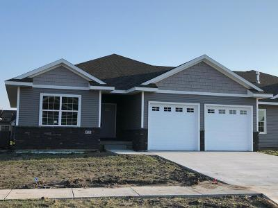 Ames Single Family Home For Sale: 5721 Quarry Drive