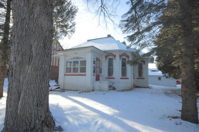 Boone Single Family Home For Sale: 105 S Story Street