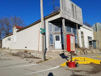 Story County Commercial For Sale: 102 E Main Street