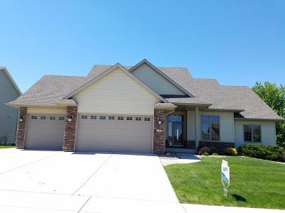 Ames Single Family Home For Sale: 705 Poe Avenue