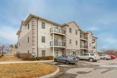 Story County Condo/Townhouse For Sale: 4511 Twain Circle #201