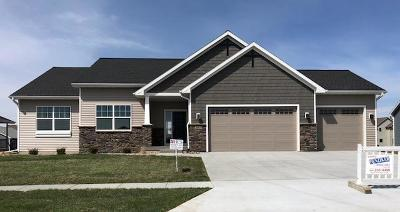 Ames Single Family Home For Sale: 2849 Aberdeen Drive