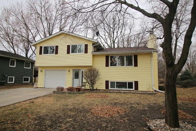 Ames Single Family Home For Sale: 3421 Southdale Drive