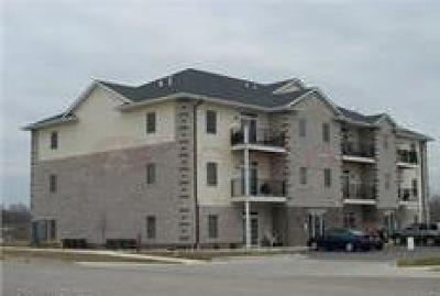 Ames Condo/Townhouse For Sale: 4511 Twain Circle #102