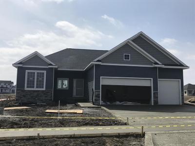 Ames Single Family Home For Sale: 1618 Ledges Drive